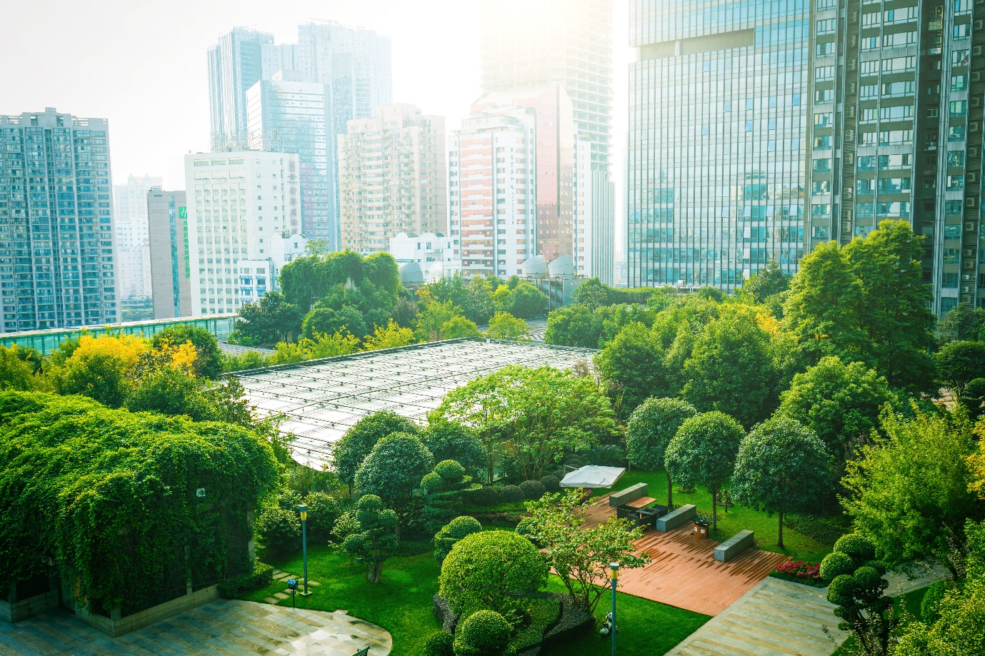 High rise building landscape surrounded by many green trees